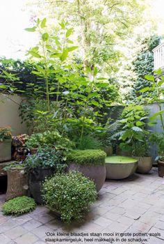 style patio