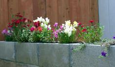 Cinder block flower bed border with flowers planted inside.