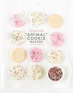 Homemade Frosted Animal Cookie Wafers!