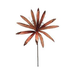 ""\"""" Papyrus """" Flower- Copper (¥2,285) ❤ liked on Polyvore featuring home, home decor, floral decor, brown, fabric flowers, copper tree, fake flower bouquets, petals silk flowers and blossom tree""236|236|?|en|2|93beaeb9bdfa7195c2e3876b43aa38b7|False|UNLIKELY|0.3002570867538452