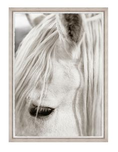 Focusing on White Horse II - Framed print with torn edge mounted on white matboard with rustic washed wood frame - Measures: 33.75 x 45.75 - Made in the USA - Please allow 3-4 weeks