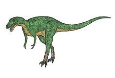 1280px-Alctrosaurus_2-fingered.JPG (1280×877) - Alectrosaurus. Dinosauria, Saurischia, Theropoda, Tetanurae, Avetheropoda, Coelurosauria, Tyrannosauroidea. Auteur : Conty.