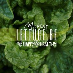 #Vegan #Monday! Serving up a little #humor with #lettuce #BeHappy (and #healthy). Heehee~ #madewithstudio