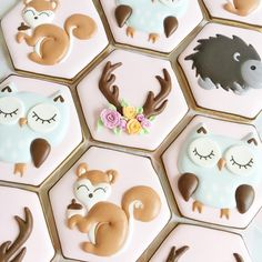 "204 Likes, 17 Comments - Karyn Patching (@sweet_n_pretty_) on Instagram: ""The rest of the woodland animals #woodlandanimals #woodlandanimalcookies #cookies…"""