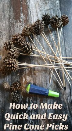 Pine cone picks are an easy way to include pine cones in your festive wreaths and flower arranging. Here we show you how to make them in literally a flash. K Crafts, Nature Crafts, Flower Crafts, Fall Crafts, Holiday Crafts, Plate Crafts, Holiday Wreaths, Clothespin Crafts, White Pine Cone