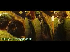 OILY THICK LONGHAIR SUPER PLAY WITH BOYFRIEND INDIAN DIVA Parvatee Lavan...