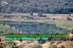 Hoy nos acercamos a Las Lagunas de Ruidera por segunda vez para recorrer una de sus rutas más curiosas, la llamada ruta de la Quebrada del Toro.