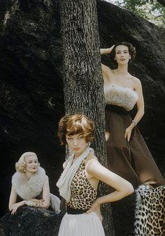 Sunny Harnett (l), Ivy (m), Nina Leen | loving the leopard - leopard print is so timelessly classy & sexy!