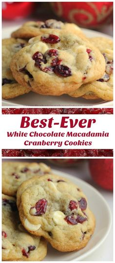 The Baking ChocolaTess | Best-Ever White Chocolate Macadamia Nut Cranberry Cookies | http://www.thebakingchocolatess.com Chocolate Macadamia Nuts, Cranberry White Chocolate Cookies, Macadamia Nut Cookie Recipe, Macadamia Nut Recipes, Cranberry Bars, Cranberry Cookie Recipe, White Chocolate Chips, Chocolate Muffins, Baking Cookies