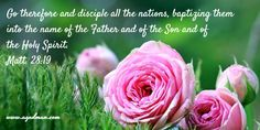 Matt. 28:19 Go therefore and disciple all the nations, baptizing them into the name of the Father and of the Son and of the Holy Spirit. Bible Verse quoted at www.agodman.com