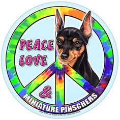 (Hippie Dog Waterproof Magnet New. new puppy gift or just buy one or two for yourself. Your dog will love them :-). A magnet won't do that! Great for the back of the car or any metal surface like file cabinet or refrigerator. | eBay!