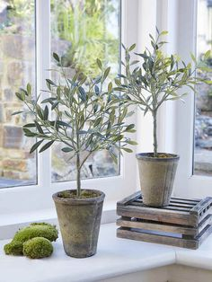 Small Faux Olive Tree | Small Fake Olive Tree | Small Olive Tree