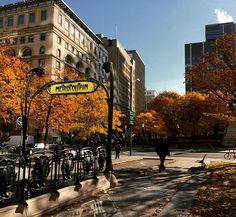 L'automne à Montréal. Tellement beau! #touristedansmaville #jaimeMontreal #couleursdautomne #vivelavie @montreal @levieuxmontreal by mheroux