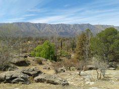 Nono en Córdoba Claude Monet, Four Square, Pokemon, Mountains, Nature, Travel, Cordoba, Countries, Naturaleza