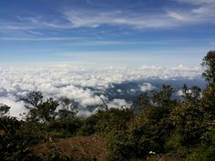 Mt. Cikuray - West Java