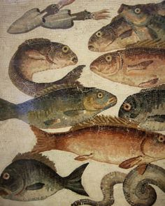 Roman Fish mosaic, British Museum, London, UK Ancient Fish, Ancient Greek Art, Ancient Rome, Décor Antique, 17th Century Art, Roman History, Fish Art, Mosaic Art, Oeuvre D'art