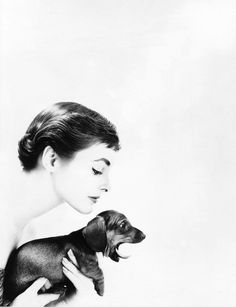 Photo by Lillian Bassman, 1950s.