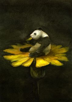 Akitaka Ito Gorgeous Panda with daisy flower Panda Art, Panda Panda, Panda Love, Bear Art, Art For Art Sake, Pictures To Paint, Art Forms, Unique Art, Painting & Drawing