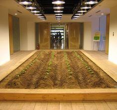 Pasona Urban Farm by Kono Designs / @Dezeen magazine | #workspaces