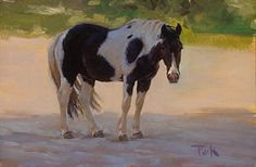 Her Favorite One by carol peek  Oil ~ 6 x 9