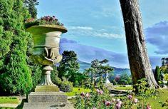 Visit Powerscourt Gardens in Ireland one of the World's Greatest Gardens. Explore 47 acres of beautiful Italian and Japanese Gardens. Ireland Homes, House Ireland, Italian Garden, Dublin City, Emerald Isle, The World's Greatest, Fountain, Home And Garden, Gardens