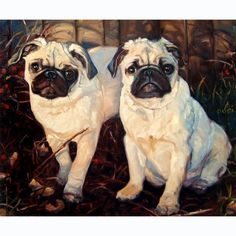 SeeingDouble custom Pet Portrait Oil Painting by puciPetPortraits