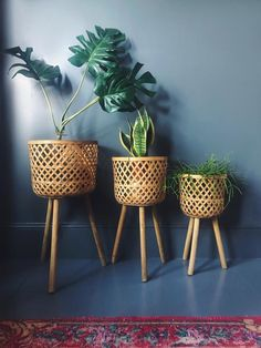 diy plant stand Woven Rattan Plant Stand in 3 Sizes Homeplace Rattan Planters, Diy Planters, Planter Ideas, Copper Planters, Bamboo Plants, Indoor Plants, Diy Plant Stand, Wooden Plant Stands, House Plants Decor
