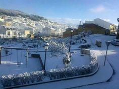 En Febrero de 2013 cayó una preciosa nevada