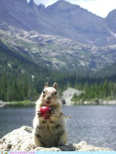 I'm better than you, I live on a nice lake, and I got a cherry :))