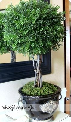 The urn is from Michael's using a 40% coupon, fill it with foam and moss, use sticks to make a trunk, and then use a foam ball and boxwood branches (from Hobby Lobby using 40% off coupons) to make the topiary. Total cost is around $35.