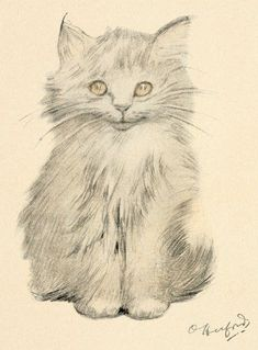 Kitten Portrait    I love all of the cat drawings by Oliver Herford from this book. Except for the eyes, it's clear that this is a pencil drawn cat. But, the eyes, they look like a photograph rather than a simple drawing. It was this technique of using just a hint of color that really makes Herford's work hard to not stare at. The best part is that his work is now in the public domain and we can freely use this drawing of a kitten in our own creative endeavors.    Artist: Oliver Herford…