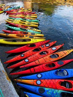 http://www.dailydigitalphoto.com/cgi-bin/potd/potd.pl?day=4
