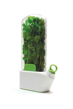 An herb saver that keeps your herbs fresh.
