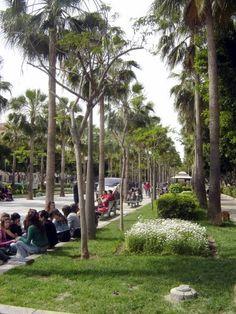 Almería - Rambla (Avenida Garcia Lorca)  (photo: Robert Bovington)   Avenida Federico García Lorca, a wide boulevard that has replaced the old Rambla de Belén, divides the modern city into east and west.