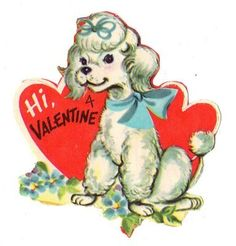 Cute Little French Poodle With A Valentine Message / Vtg Unused Valentine Card