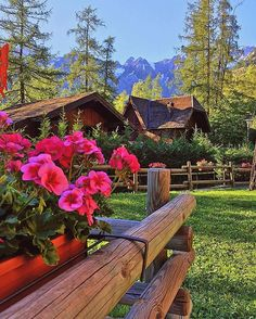 #courmayeur #courmayeurmontblanc #montebianco #montblanc #valledaosta #flower #flowers #gerani #fiori #afternoon #view #view #views #panorama #landscape #instantview #enjoy #relax #mountain #mountains #montagna #montagne #color #colour #colorful #colori #memories #vacation #nature
