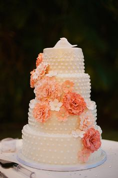 peach wedding cake // photo by Merari Photography, cake by Leelee's Cake-Abilities // http://ruffledblog.com/dominican-american-backyard-wedding