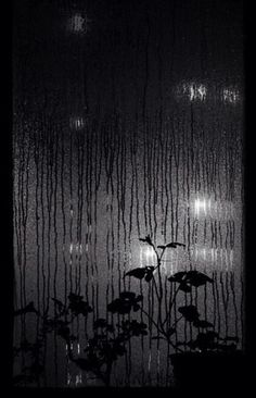Night rain (via Ujo Higashiyama)