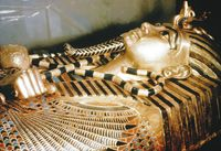 Free Unwrapping the Pharoah's book at answers in genesis  read it on their site