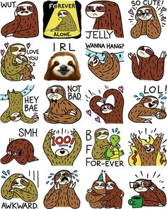 Alpacas, Cartoon Drawings, Cute Drawings, Sloth Drawing, Cute Sloth, Funny Animal Memes, My Spirit Animal, Cute Baby Animals, Wild Animals
