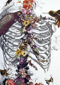 Flowers & Skeletons.