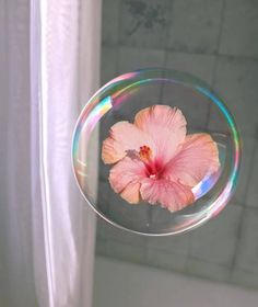 🌸 🛀 Flores do dia! Flower Aesthetic, Aesthetic Photo, Aesthetic Pictures, Pics Art, Love Flowers, Aesthetic Wallpapers, Hippie Style, Just In Case, Bubbles