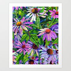 Echinacea - Bright Pink Flower Art in Acrylic Art Print by Morgan Ralston - $16.00