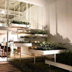 Na inauguração da @liderinteriores que inaugura hoje sua nova loja com evento organizado por @marianaamaralcomunicacao Apaixonada pela loja linda e por todos os produtos. #interiordesign #decor #olioliteam #canalolioli