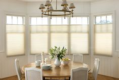 Shop for shades. Get Off Custom Levolor Blinds and Shades in Home. Buy Levolor - Custom - Window Treatments - The Home Depot Get This Deal Levolor - Custom - Window Treatments - The Home Depot Enjoy the deal All Window Coverings, Window Treatments, Honeycomb Shades, Cellular Shades, Light Filter, Home Safes, Shades Blinds, Sweet Home, New Homes