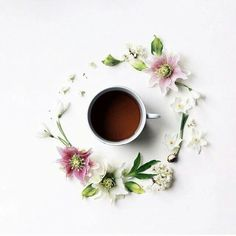Coffee Coffee Coffee, flowers, circle, design, good morning