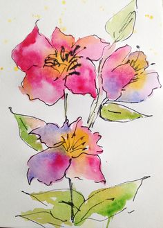 Wild rose pen and watercolor, watercolour flowers, watercolor painting techniques, watercolor pictures, Watercolor Painting Techniques, Watercolor Projects, Pen And Watercolor, Watercolor Flowers, Painting & Drawing, Watercolor Paintings, Watercolours, Watercolor Artists, Watercolor Portraits