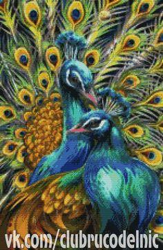free cross stitch pattern:  peacocks
