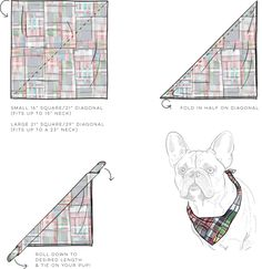 How to Tie Dog Bandana