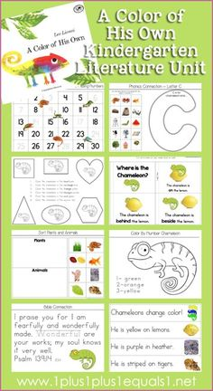 Kindergarten Literature Unit Study Printables to go along with the book, A Color of His Own -- FREE from @1plus1plus1 #Kindergarten
